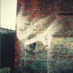 texture-29-03-12-fred-nasen