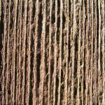 texture-05-02-11-fred-nasen