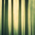 texture-19-01-11-guest-mix-koodoo