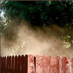 texture-23-02-12-fred-nasen